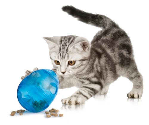 PetSafe Funkitty Katzenspielzeug Egg-Cersizer, Snackball mit einstellbarer Futterausgabe, f