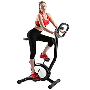 Evoland Heimtrainer, F-Bike Home Trainer Fitness Bike