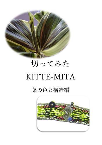 KITTE-MITA: HANOIROTOKOUZOUHENN KITTE-MITAsiri-zu (KURIPUTOGAMAE) (Japanese Edition)
