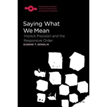Saying What We Mean: Implicit Precision and the Responsive Order (Studies in Phenomenology and Existential Philosophy (Paperba)