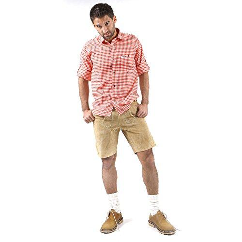 ALMBOCK kurze Lederhose Herren Tracht | Lederhose kurz Herren braun mit verstellbaren Hosenträgern | Lederhose kurz Tracht - Lederhose Herren kurz 46 - 8