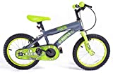 Silverfox Toxin Kinder Fahrrad, 40,6cm, grün und schwarz