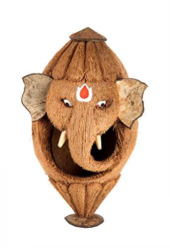 Buddha4all Ganesh G - Expositor Decorativo, diseño de Coco, 20,32 cm (Madera, marrón)