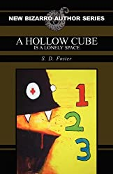 A Hollow Cube Is a Lonely Space (New Bizarro Author) by S. D. Foster (2011-11-16)