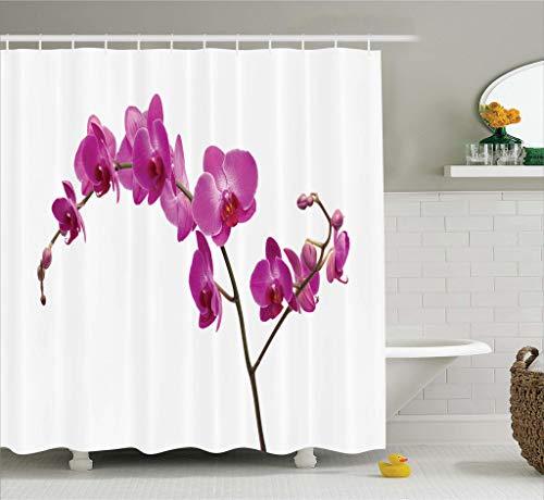 Abakuhaus Duschvorhang, Wilde Orchideen Blütenblätter Floral AST Romantische Blume Exotisch Pflanze Natur Kunstdruck, Blickdicht aus Stoff inkl. 12 Ringen Umweltfreundlich Waschbar, 175 X 200 cm