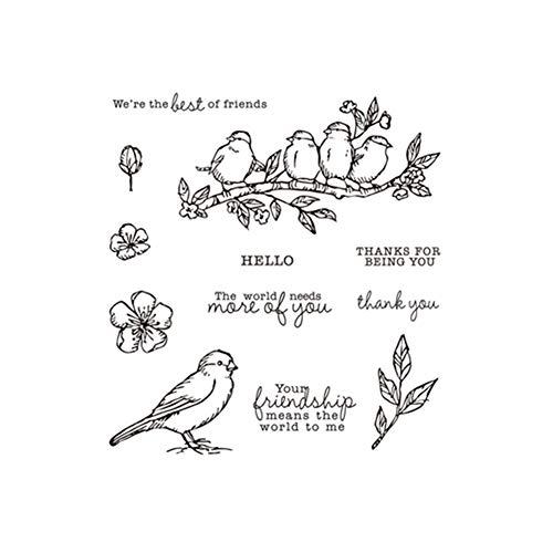zmigrapddn Stanzformen, handgefertigte Schablonen für Scrapbooking-Werkzeug, DIY Basteln, dekorative Prägeschablone für Album, Papier, Karten, Metall Stamp