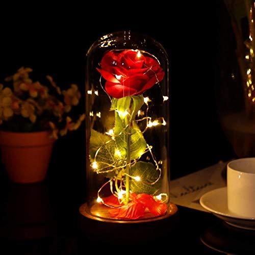 MMTX Die Schönheit und das Biest Rose Kit, LED-Licht Geschenk für Muttertag mit gefallenen Blütenblättern in Glaskuppel für Wohnkultur Geburtstag Hochzeit Valentinstag