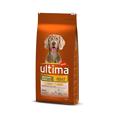 Ultima Cibo per Cani Medium Maxi Adulto con Pollo, 12 kg