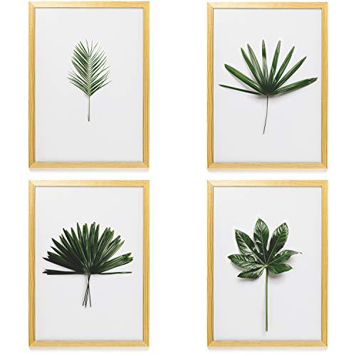 Heimlich Poster 4er Set Botanic Pflanzen - 19,90 €