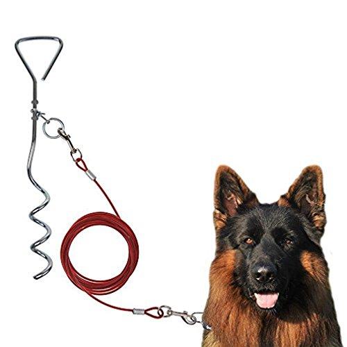 Timtina Spiralhering Hundepflock Hundeanker inkl. Hundeleine