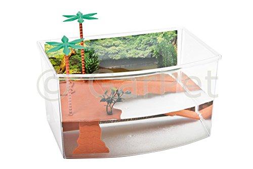 Schildkröten Terrarium Insel Aquarium Becken Heim Wasserschildkröten Kunststoff