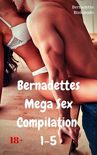 Bernadettes Mega Sex Compilation 1-5: 385 perverse Storys auf mehr als 3500 Seiten!