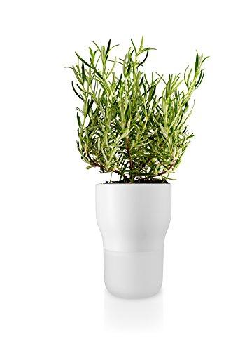 Eva Solo Pot de Fleurs, Système d'Auto-Irrigation, Niveau d'Eau Visible, Ø 11 cm, Verre/Céramique, Chalk White, Blanc, 568146