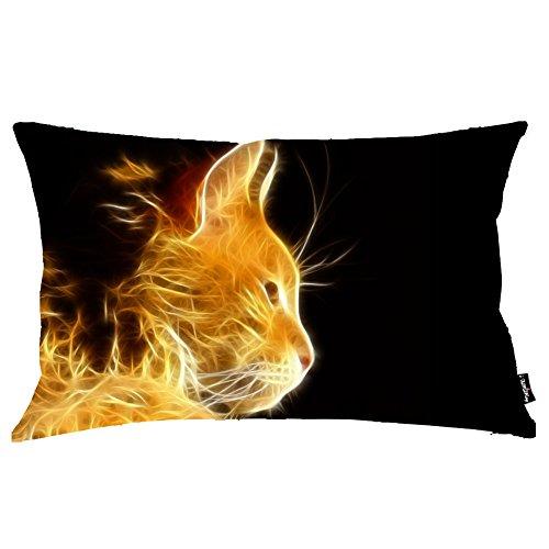 i-famuray-cat-fractal-light-photoshop-rays-theme-federa-cuscino-16x24
