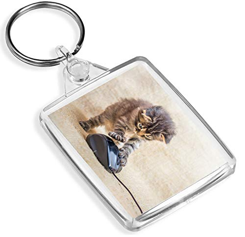 Cute Kitten Jagd Schlüsselanhänger Schildpatt Fun Schlüsselanhänger Geschenk # 14602