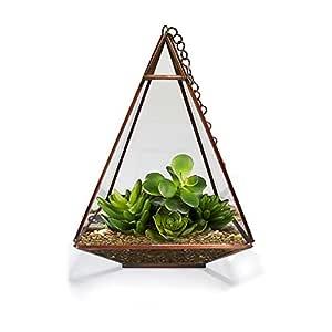 TrustBasket Triangular Tower Terrarium for Small Indoor Plants