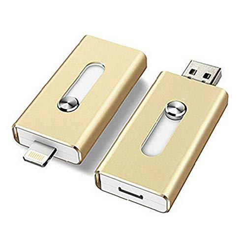 Usb-sti (QinLL 128 GB / 256 GB USB-Flash-Laufwerk für iPhone, iOS Memory Stick, iPad Externe Speichererweiterung für iOS Android PC-Laptops,aa,D,256G)