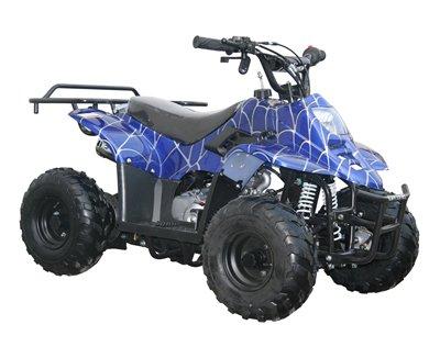 9L azul Spider cuerpo plástico Fender 50cc 70cc 90cc 110cc 125cc ATV Quad aps03