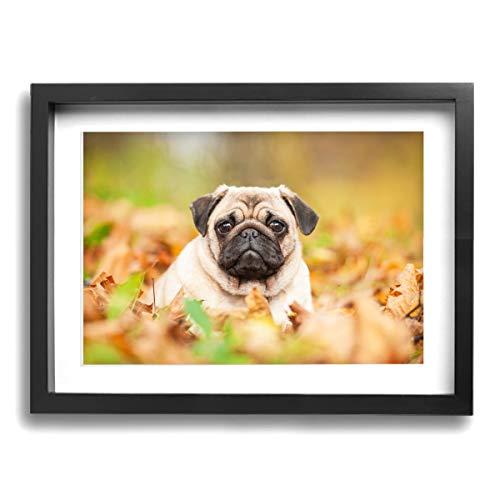 GYXWCNM Leinwandbild, Motiv Mops auf Leinwand, gerahmt, 30 x 40 cm, perfektes Geschenk für Küche oder Schlafzimmer, Schwarz, Einheitsgröße (Mops Stofftier Schwarze)