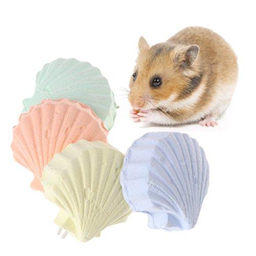 Papagei Hamster Zähne Schleifen Spielzeug Vögel Eichhörnchen Calcium Stein Shell Form Kauen
