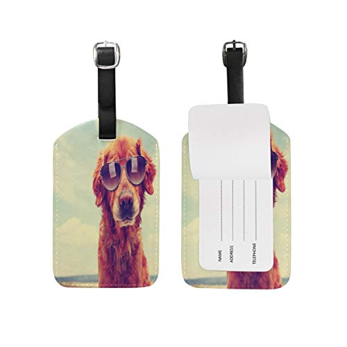 89tAGS4331 Golden Retriever Hundegepäckanhänger für Koffer, 1 Stück