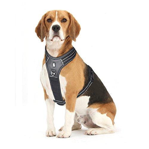 FRETOD Hundegeschirr Leder für Große Hunde Einstellbar Weich Gepolstert Brustgeschirr Schwarz