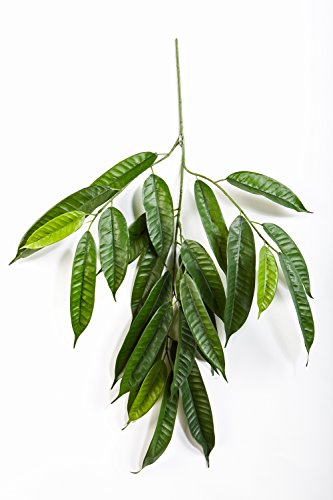 artplants Set 3 x Deko-Longifoliazweige LOKESH mit 25 Breiten Blättern, grün, schwer entflammbar, 70 cm – Zweige künstlich/Kunst Pflanze