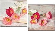 Cuadros decoración salon baño WC Amapolas y libro para decorar baño comedor dormitorio cocina office 24x24x7 i