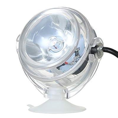 POPETPOP USB Lampe Aquarium lumière sous-Marine LED pour Corail récif Fish Tank Submersible Aquarium Light Spot Lamp