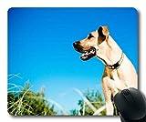Gaming Mousepads, Terrier Yorkie Dog großer dane Hund, Präzisionsnaht, haltbare Mausunterlage