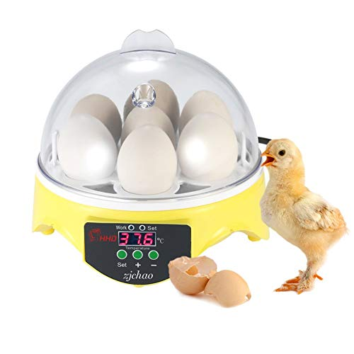 Incubadora Automática 7 Huevos