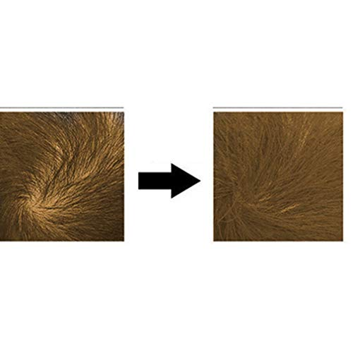 Haarfärbespray für Männer Soft Hair Beauty Tool Instrument Aid ()