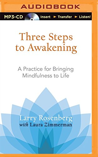 Three Steps to Awakening: A Practice for Bringing Mindfulness to Life