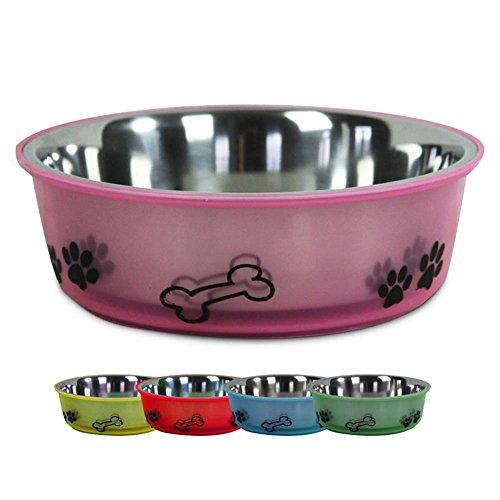 hundeinfo24.de 2 x HC-Handel 910969 Edelstahl Hundenapf Fressnapf Edelstahl/Kunststoff 21 x 6,5 cm verschiedene Farben