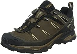 Salomon X Ultra Ltr Gtx, Men Low Rise Hiking Shoes, Brown (Absolute Brown-xblacknavajo), 10 Uk (44 23 Eu)