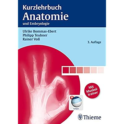 PDF] Kurzlehrbuch Anatomie: und Embryologie KOSTENLOS HERUNTERLADEN ...