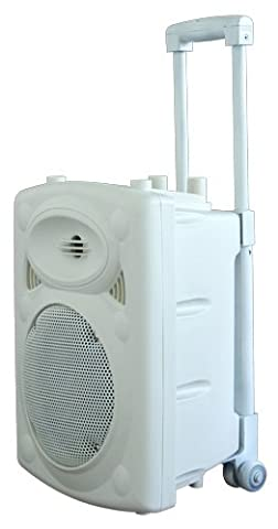 Ibiza PORT8VHF-BT-WH Système de Sonorisation portable