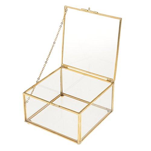 petsola Caja De Cristal Suculenta Cuadrada del Plantador De La Planta