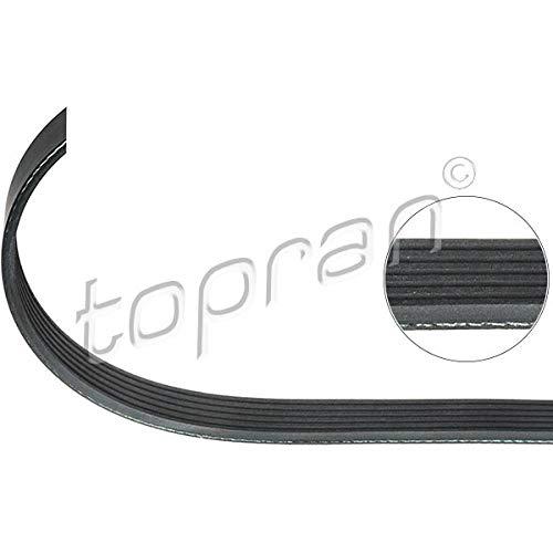 Topran Balai Interrupteur, 110 104