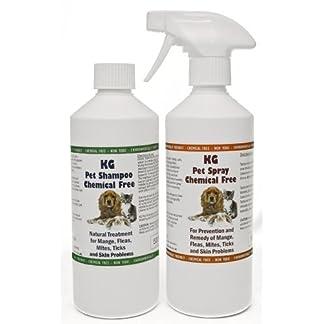 KG Wash & Go No Rinse Pet Shampoo 500ml & Spray 500ml. Rids & Protects from Mange, Fleas, Ticks, Mites & Itchy Skin… 7