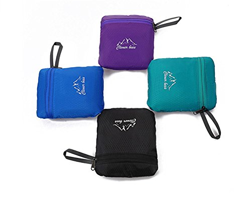 Wandern Leichtgewicht Rucksack multifunktional Outdoor faltbare Erholung wasserdicht Packung Dating Shopping Travel Tasche Rucksack Skin Tasche 4 Farbe H46 x W31 x T12 CM Black