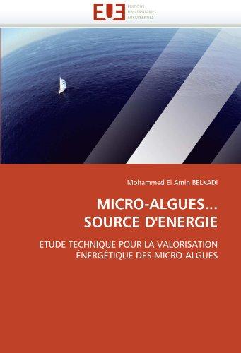 micro-algues-source-denergie