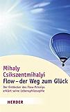 Flow - der Weg zum Glück: Der Entdecker des Flow-Prinzips erklärt seine Lebensphilosophie (HERDER spektrum)