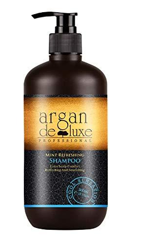 Arganöl Shampoo Cool Mint For Men in Friseur-Qualität  Regenerierend, Belebend, Kühle Frische...