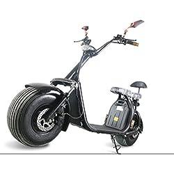 Scooter Eléctrico 1000W E-Bike 2asientos