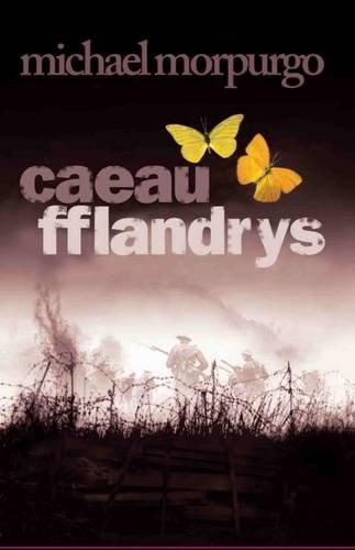 Caeau Fflandrys