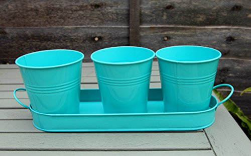 galvanized-zinc-metal-herb-flower-pots-planter-set-of-3-on-tray-various-colours-turquoise-blue