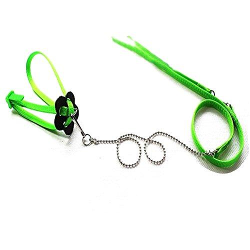 PIXNOR 1,2 M einstellbar Reptil Eidechse Harness Leine im freien Spaziergang (grün) -