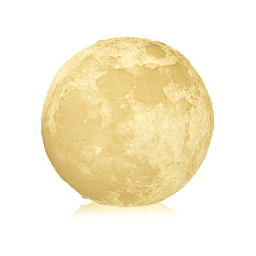 Mspark stampa 3D luna lampada ricarica luna luce notturna, Warm & Cold 1.00 W