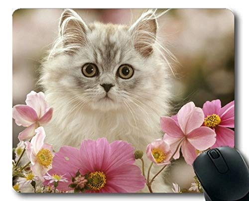 Gaming-Mauspad, Pet Pink Flower Stare Weiße Blume Cat Mauspad, Mauspad für Computer cat174 -